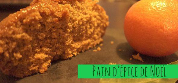 Pain d'épice de Noël (sans gluten/sans lactose/sans oeuf)
